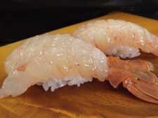 藜蝦/アカザエビ