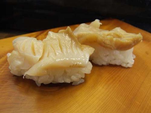 朝鮮法螺/チョウセンボラ
