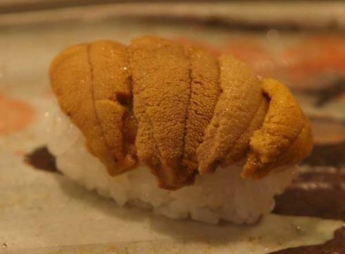 松江市内『大鯛寿司』の十二かん、その十一 赤海胆/アカウニ 六百五十一かん目