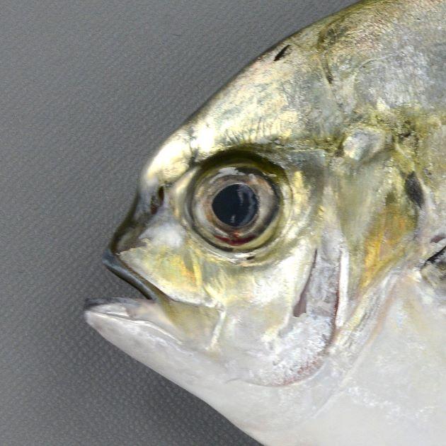 目の前の軟骨状のコブはふくらみ、吻との間のくぼみも顕著。