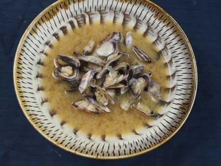 ウネナシトマヤガイのみそ汁