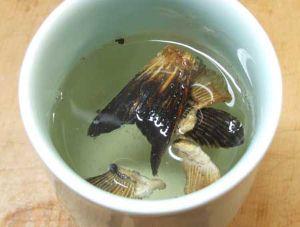 トラフグのヒレ酒