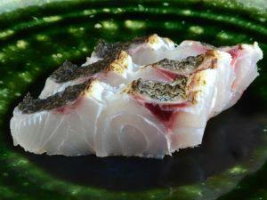 シマアオダイの刺身