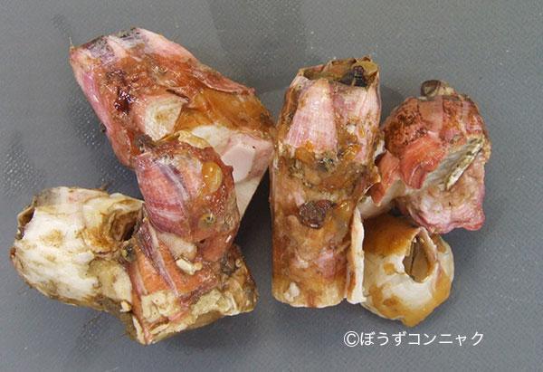 アカフジツボの形態写真