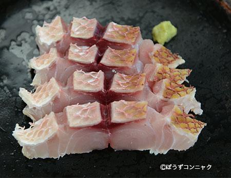 オオクチハマダイの刺身