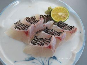 ハナフエフキの刺身