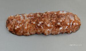 アカオニナマコのサムネイル写真