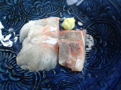 タイワンヨロイアジの刺身