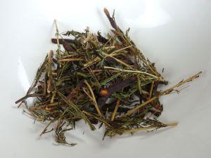 カワラケツメイのお茶