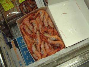 市場でのホンホッコクアカエビ