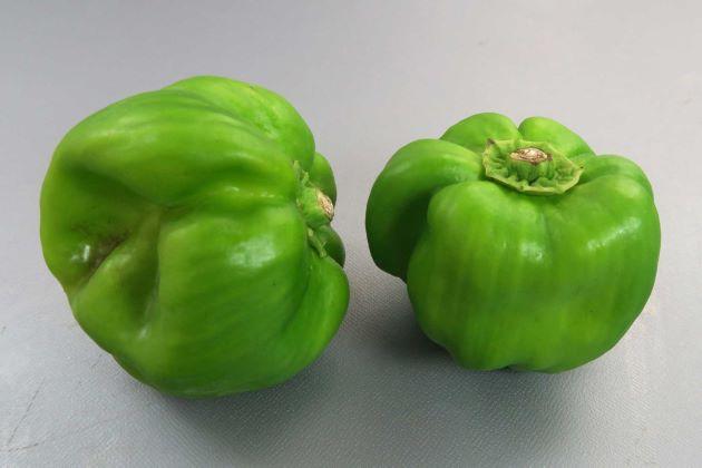 かぐらなんばん/新潟県南部、群馬県北部などで作られている伝統野菜。辛みはあまり強くはな。