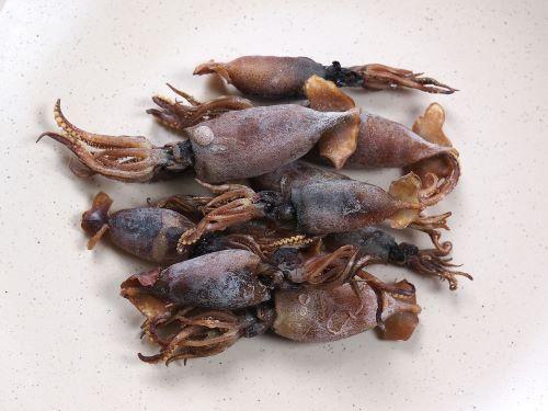 稚イカの煮干し