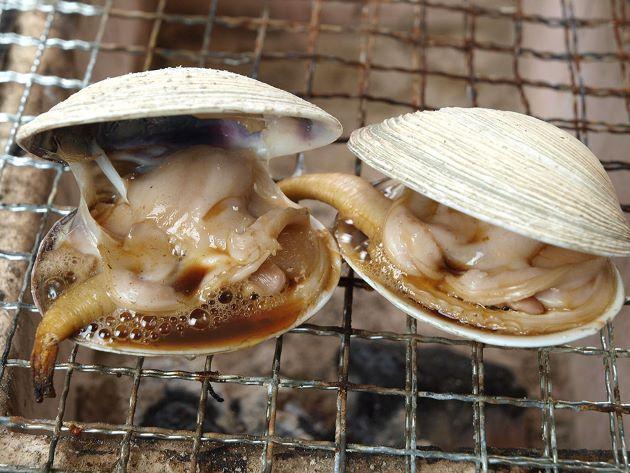 大アサリの焼き貝