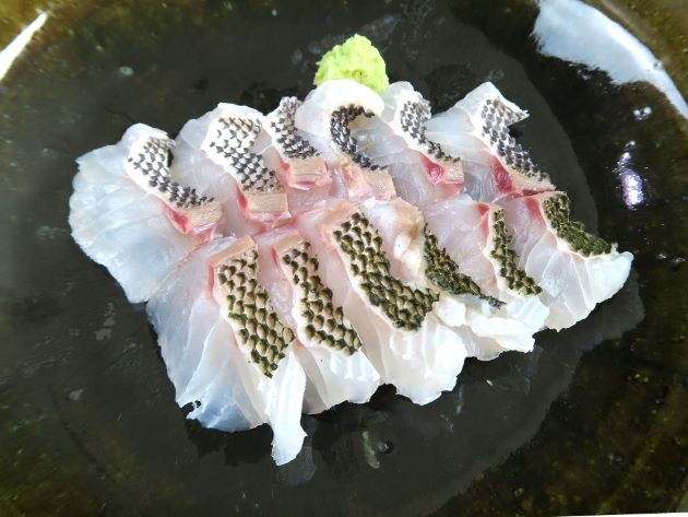 ウメイロの皮霜造り