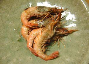 サルエビ(英名/Cocktail shrimp, Southern rough shrimp)