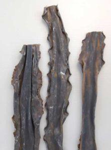ミツイシコンブのサムネイル写真