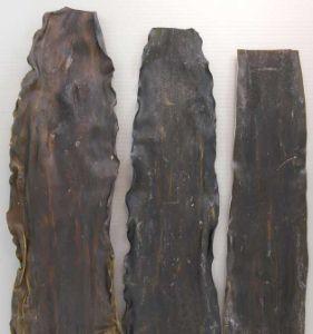 リシリコンブのサムネイル写真