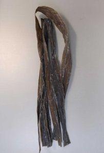 ナガコンブのサムネイル写真