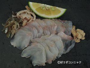 オニカサゴの刺身