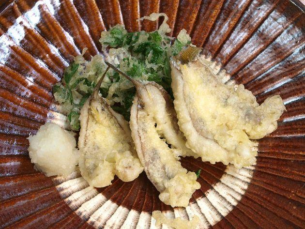 クラカケトラギスの天ぷら