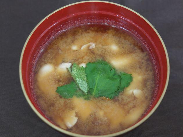 マフグの白子の味噌汁