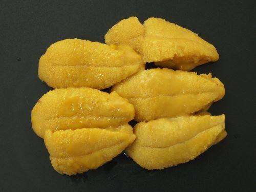 キタムラサキウニの刺身