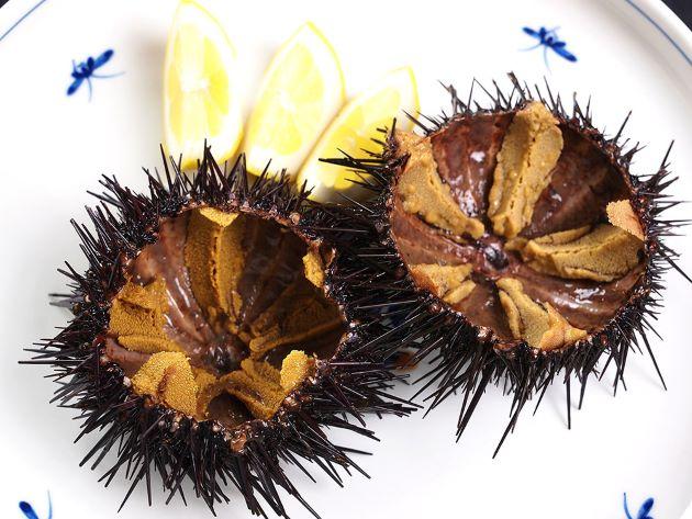 キタムラサキウニの生食