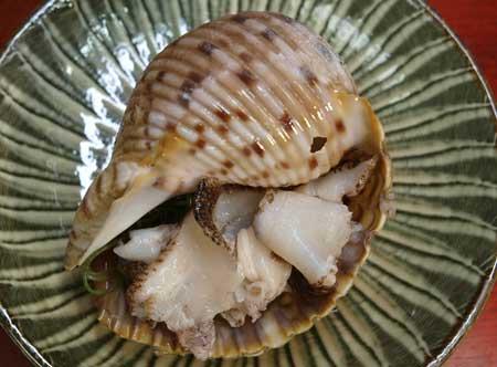 ヤツシロガイの刺身
