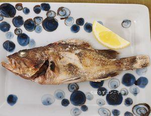 タヌキメバルの塩焼き