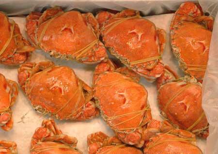 ヒラツメガニの煮ガニ(ゆでがに)