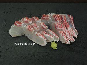 センネンダイの刺身
