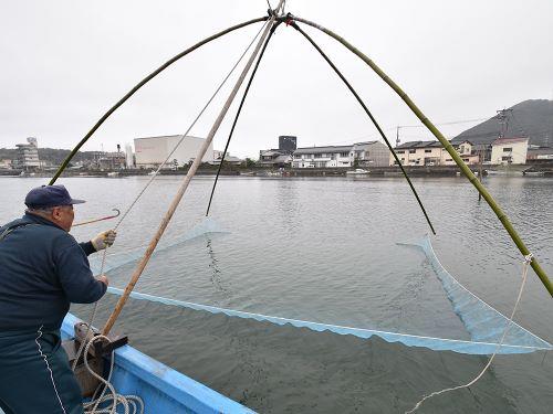 萩のシロウオ漁