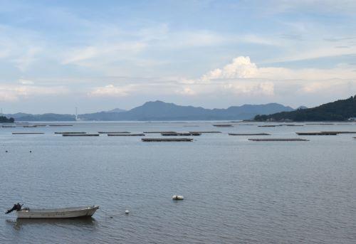 広島湾、養殖筏