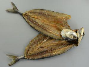 今も残る刺鯖